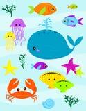 Unter dem Meer Lizenzfreies Stockbild