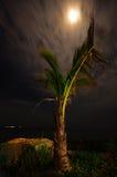 Unter dem Mondschein lizenzfreie stockfotografie