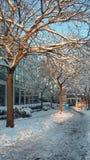 Unter dem Schnee lizenzfreie stockbilder