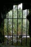 Unter dem Wasserfall Stockbild
