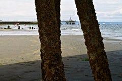 Unter den Docks stockbilder