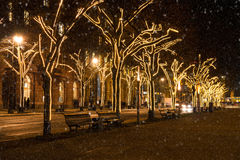Unter den linden at christmas time Royalty Free Stock Photography