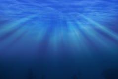 Unter Meer Stockfotografie