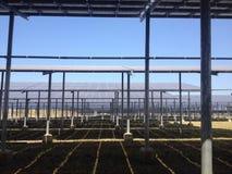 Unter Solarzellen Stockfotografie