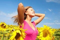 Unter Sonnenblumen Stockfoto