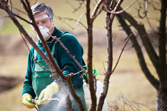Unter Verwendung der Chemikalien im Garten/im Obstgarten lizenzfreies stockfoto