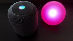 Unter Verwendung eines Sprechers Apples HomePod, zum eines intelligenten Lichtes zu steuern stock video footage