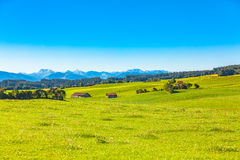 Unterallgau stock photos