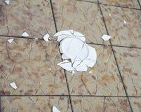 Unterbrochene Platte auf einem Fliesehintergrund Stockbilder
