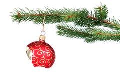 Unterbrochene Weihnachtsdekoration, die an einem Baum hängt Lizenzfreie Stockfotografie