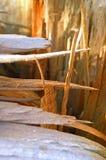 Unterbrochener Baum Stockfoto