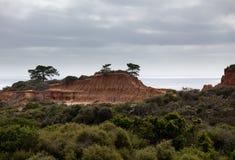 Unterbrochener Hügel im Torrey Pines-Nationalpark Stockfoto