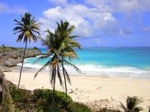 Untere Bucht, Barbados, die Karibischen Meere stockfotos
