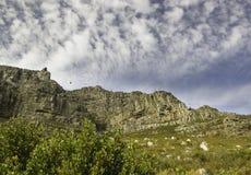 Untere hohe Ansicht des Tafelbergs lizenzfreie stockfotografie