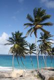 Unterer Schacht Barbados stockbild