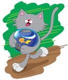 Unterhaltende Katze und Aquarium Lizenzfreie Stockfotos