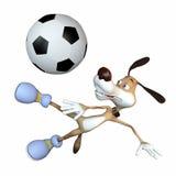Unterhaltender Hundefußballspieler. Stockfotos