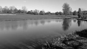 Unterlassung des Teichs stockbilder