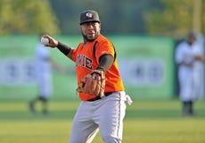 Unterliga-Baseball Throw 2012 Lizenzfreies Stockbild