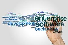 Unternehmens-Software-Wortwolkenkonzept auf grauem Hintergrund lizenzfreie stockfotografie