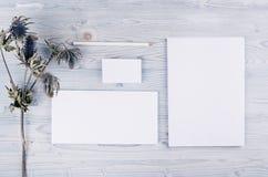 Unternehmensidentitä5sschablone, Briefpapier mit trockener Blume auf weichem hellblauem hölzernem Brett Verspotten Sie oben für d lizenzfreies stockfoto