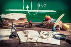 Unterrichtende Biologie an der Weinleseschule lizenzfreie stockfotografie