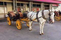 Unterscheiden sich hölzerner Pferdenzug der Weinlese in Karlovy, Tschechische Republik Lizenzfreies Stockfoto