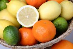 Unterschiedliche frische Zitrusfrucht Stockbilder