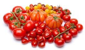 Unterschiedliche Vielzahl der Tomaten Stockfotos