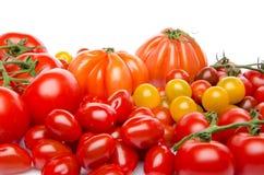Unterschiedliche Vielzahl der Tomaten Stockfotografie