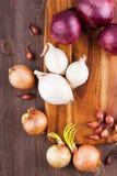 Unterschiedliche Vielzahl der Zwiebeln Stockfoto