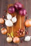 Unterschiedliche Vielzahl der Zwiebeln Stockfotos