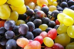 Unterschiedliche Vielzahl von Trauben Stockbild