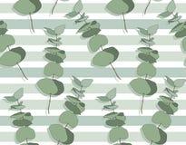 Unterschiedlicher Baum des Eukalyptus, natürliche Niederlassungen des Laubs mit Grün verlässt Samen tropisches nahtloses Muster Lizenzfreie Stockbilder