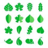 Unterschiedlicher Blattsatz Der transparente einfache Schatten ersetzen Hintergrund Design eco Elementisolat auf weißem Hintergru Stockbilder