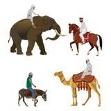 Unterschiedlicher Reitervektor stock abbildung