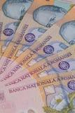 Unterschiedlicher Rumäne Lei Banknotes stockbilder