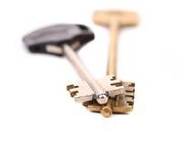 Unterschiedlicher Schlüssel zwei. Metall. Plastik. Stockfotos