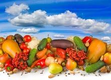 Unterschiedliches Gemüse auf Himmelhintergrund Lizenzfreies Stockfoto