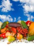 Unterschiedliches Gemüse auf Himmelhintergrund Lizenzfreie Stockbilder