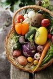 Unterschiedliches Gemüse im Großen Korb Lizenzfreie Stockfotografie