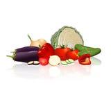 Unterschiedliches Gemüse: Kohl, Pfeffer, Zwiebeln, Tomaten Lizenzfreie Stockbilder