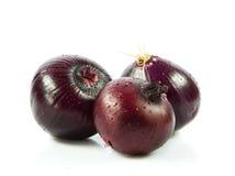 Unterschiedliches Gemüse lokalisiert auf weißen Hintergrundzwiebeln Stockbild