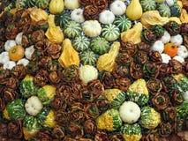 Unterschiedliches Kürbis- und Herbstlaubmuster Lizenzfreies Stockbild