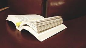 Untersuchung/pädagogisches Buch über Brown-Stuhl stockbild