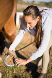 Untersuchungsband des weiblichen Tierarztes pferdean der Scheune Lizenzfreie Stockfotografie