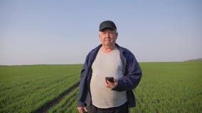 Untersuchungsboden des reifen Landwirts und mit Smartphone, der Bericht der Landwirtschaft auf einem Gebiet ?berpr?ft stock video