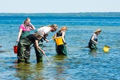 Untersuchungswasser der Gruppe mit Ringnetzen