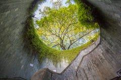 Untertageüberfahrt an Fort-einmachendem Park, Singapur Stockbild