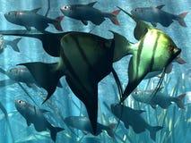Unterwasser stock abbildung